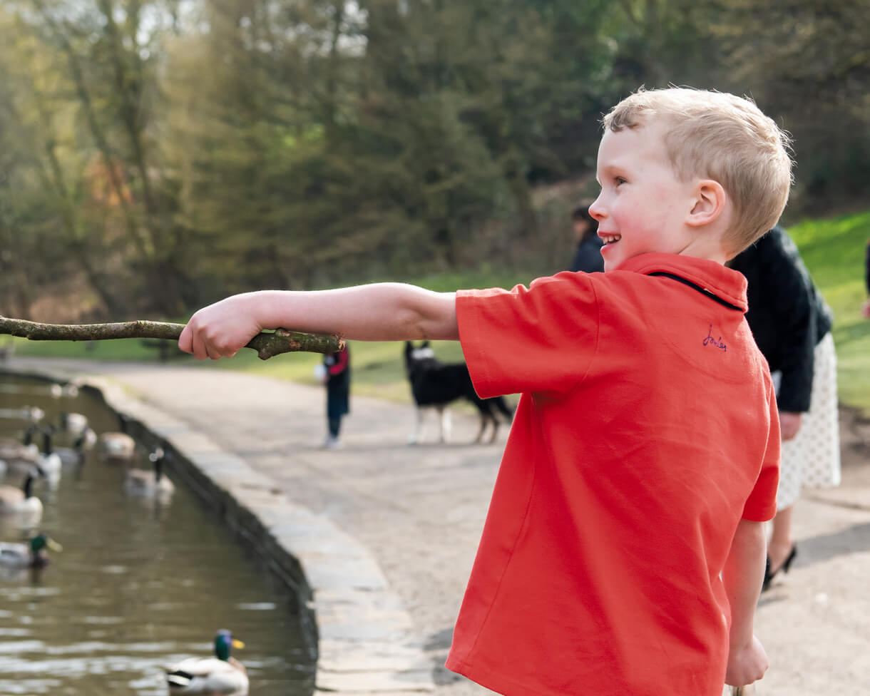 young boy throwing sticks in the duck pond at Bramhall Park