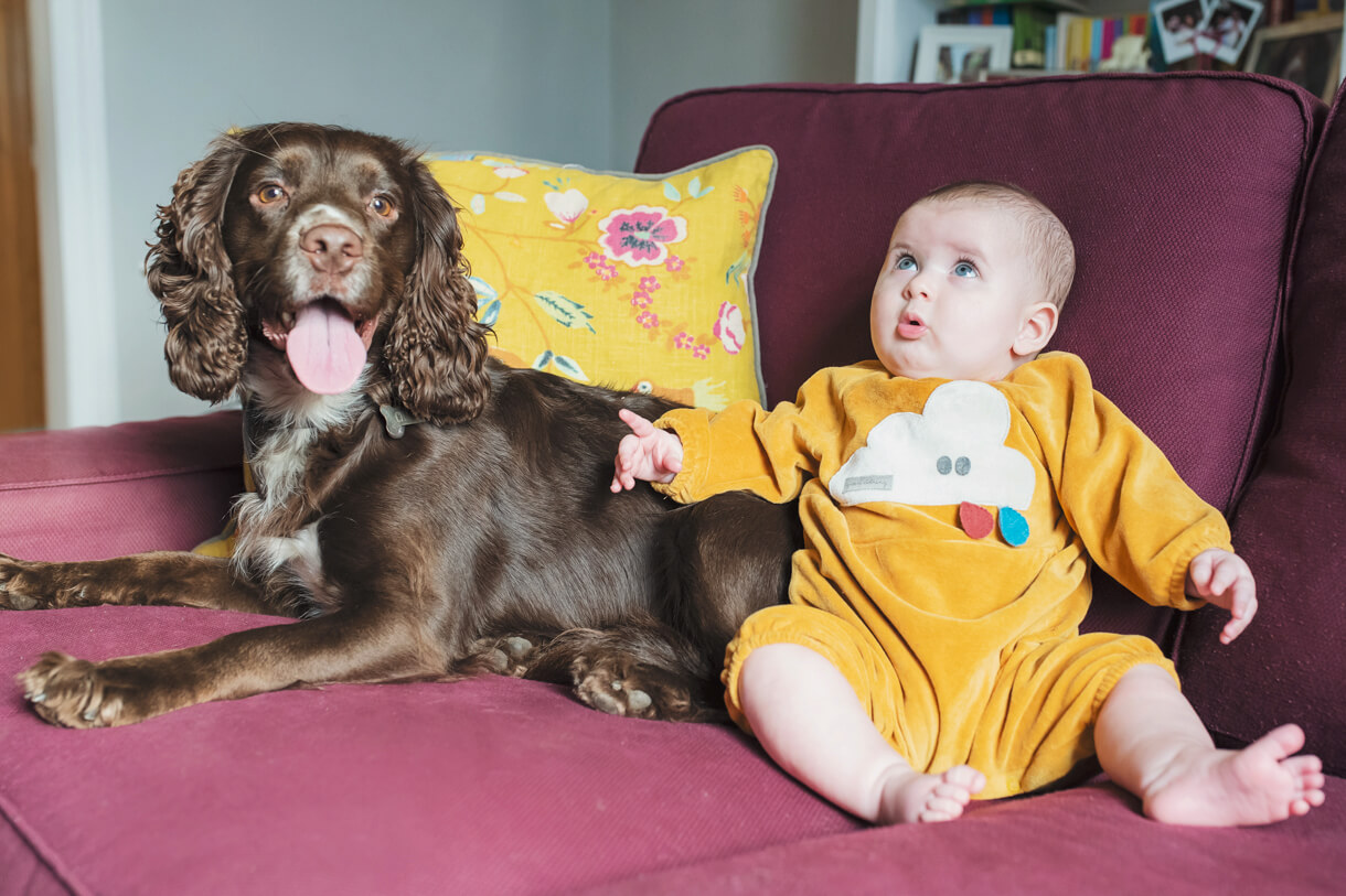 baby girl sat with brown dog on the sofe